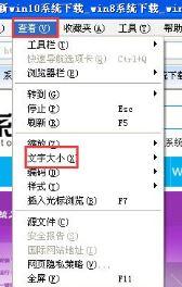 浏览器字体大小设置2