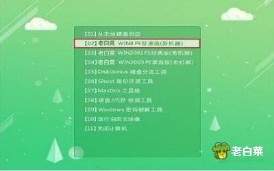 机械师f117-s6cp笔记本使用大白菜u盘安装win8系统教程