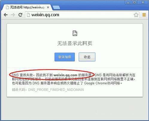 电脑无法显示网页